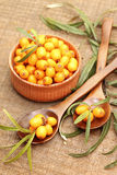 Fresh sea-buckthorn berries in wooden bowl Royalty Free Stock Photos