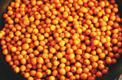 Fresh sea buckthorn in a bowl, top view Royalty Free Stock Image