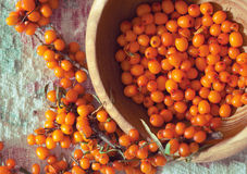 Fresh sea buckthorn on linen fabric Stock Photos
