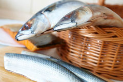 Fresh sea fish Royalty Free Stock Photo