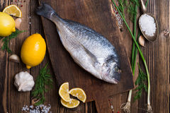 Fresh sea fish Stock Image