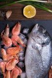 Fresh sea fish Royalty Free Stock Image