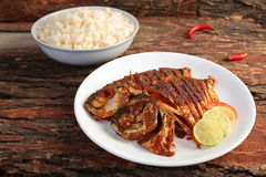 Fresh sea fish fried with herbs and spices served with white rice Royalty Free Stock Images