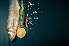 Fresh sea fish lying on dark background with spices. Space for text Royalty Free Stock Images
