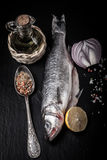 Fresh sea fish lying on dark background with spices. tinted Royalty Free Stock Image