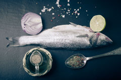 Fresh sea fish lying on dark background with spices. tinted Royalty Free Stock Photography