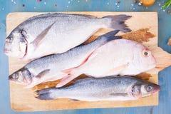 Fresh sea fish preparation Stock Images