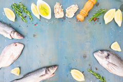 Fresh sea fish preparation Royalty Free Stock Photos
