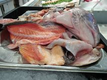 Sea fish that have been cut perfectly and are ready for sale stock image