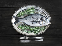 Fresh sea fish (sea bream) on a metal dish with rosemary and spi Royalty Free Stock Image