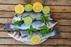 Fresh sea fish Stock Photography
