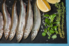 Fresh sea fish smelt or sardines ready for cooking with lemon, thyme, and coarse sea salt on a black background. The concept of fr Royalty Free Stock Photos