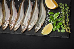 Fresh sea fish smelt or sardines ready for cooking with lemon, thyme, and coarse sea salt on a black background. The concept of fr Royalty Free Stock Image