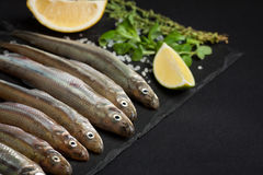 Fresh sea fish smelt or sardines ready for cooking with lemon, thyme, and coarse sea salt on a black background. The concept of fr. Esh, healthy seafood. Top Stock Image