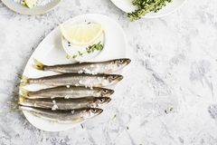 Fresh sea fish smelt or sardines ready for cooking with lemon, thyme, rosemary and coarse sea salt. The concept of fresh. Healthy seafood. Top view Royalty Free Stock Images