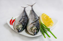 Fresh sea fish. Soup or fry Stock Photo