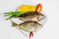 Fresh sea fish. Soup or fry Royalty Free Stock Photography