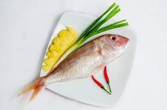 Fresh sea fish. Soup or fry Stock Photo