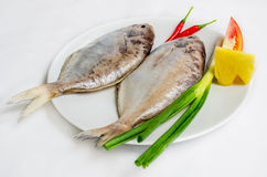 Fresh sea fish. Soup or fry Stock Photos