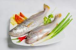 Fresh sea fish. Soup or fry Royalty Free Stock Image