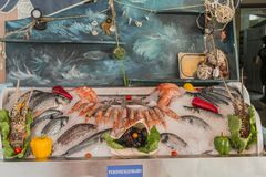 Fresh sea food. Inthe ice in restaurant i Rethymno on Crete island , Greece , Europe Stock Photography