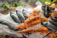 Fresh sea food Stock Images
