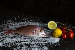 Fresh sea Italian fish whith lemon royalty free stock photography