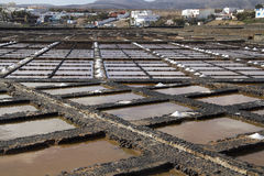 Fresh sea salt Stock Photos