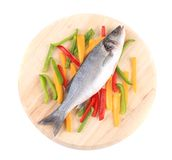 Fresh seabass fish on colorful pepper. Royalty Free Stock Photo