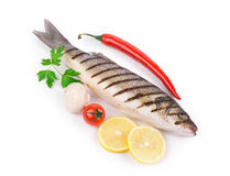 Fresh seabass fish. Royalty Free Stock Photography