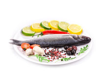 Fresh seabass with lemon and tomato on plate. Stock Photography
