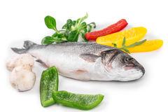 Fresh seabass with lemon and tomato on plate. Royalty Free Stock Photo