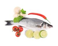 Fresh seabass with pepper and mushrooms. Stock Photo