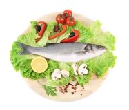 Fresh seabass on platter with lettuce. Isolated on a white background Royalty Free Stock Image