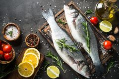 Fresh fish seabass on black. Fresh seabass. Raw fish seabass with spices and herbs on black slate table. Top view with copy space Royalty Free Stock Images