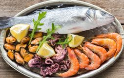Fresh seabass with seafood on the tray Royalty Free Stock Photo