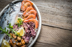 Fresh seabass with seafood on the tray Royalty Free Stock Image