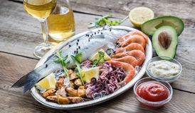 Fresh seabass with seafood on the tray Royalty Free Stock Photos