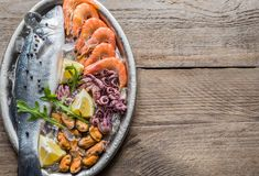 Fresh seabass with seafood on the tray Royalty Free Stock Images