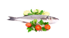 Fresh seabass with tomatoes and basil. Stock Photo