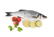 Fresh seabass with tomatoes and parsley. Royalty Free Stock Photos