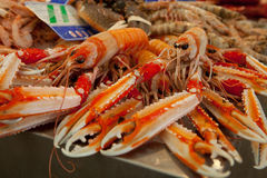 Fresh seafood Royalty Free Stock Photo