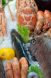 Fresh seafood. Close-up image of fresh seafood displayed on the market Stock Photos