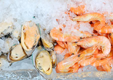 Fresh seafood. And ice for dinner Stock Photo