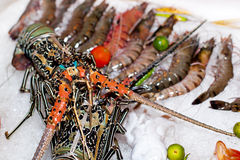 Fresh seafood in asian market. Lobsters prawns and fish Royalty Free Stock Image