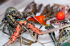 Fresh seafood in asian market. Lobsters prawns and fish Royalty Free Stock Images