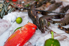 Fresh seafood in asian market. Lobsters prawns and fish Stock Photo