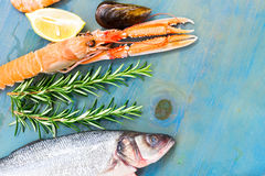 Fresh seafood on blue background Royalty Free Stock Photo