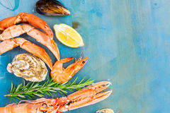 Fresh seafood on blue background Stock Image