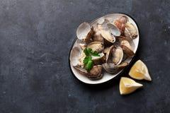 Fresh seafood bowl on stone table. Scallops Royalty Free Stock Photo